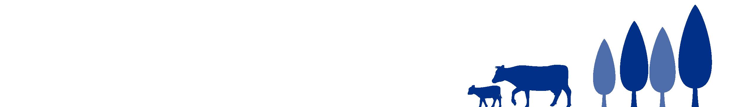 Phibro-Illustraties-Koeien-Nieuwsbrief-2-01