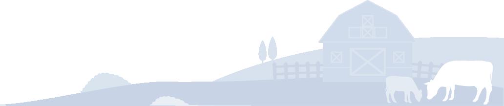 Background-Illustration_1
