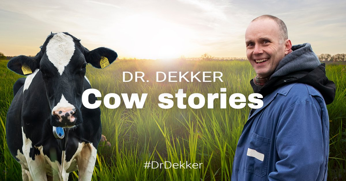 Dr. Dekker
