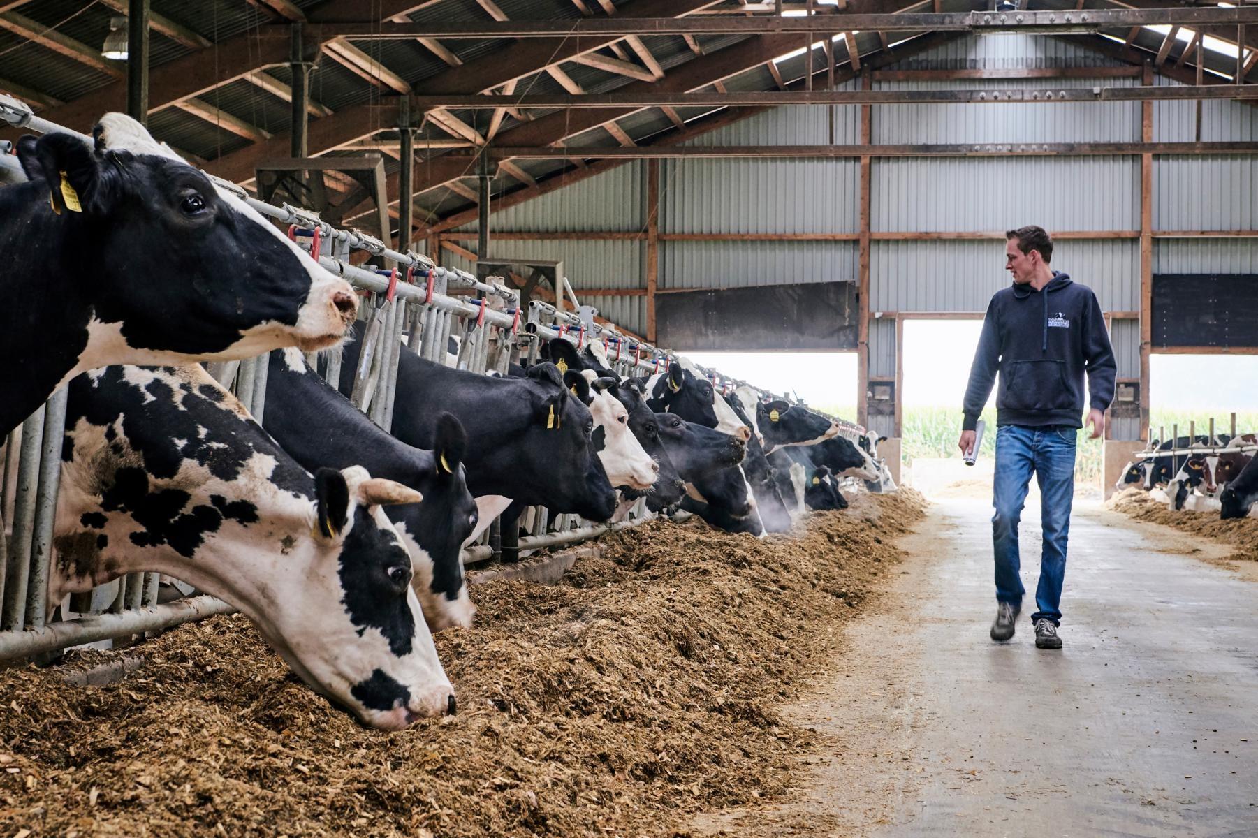 Brokering Milch KG